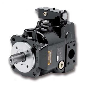 PAKER YB1-10 Piston Pump